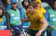 Pocock sits out training, could still face Ireland