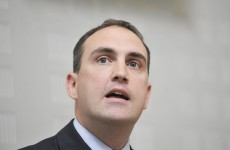 'Subversive website' comments taken out of context – FF Senator