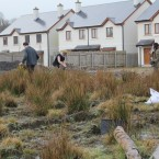 Planting saplings in wasteland at the Waterways. (Image: Sarah Lincoln)