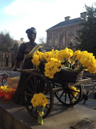 Today was the Irish Cancer Society's Daffodil Day. This great snap of Molly being put to use was taken by Clare Keaveny.