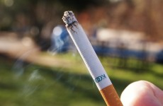 TD backs calls for smoking ban in children's playgrounds