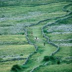 The Burren is a karst-landscape region in northwest co Clare. It is one of the largest karst landscapes in Europe and covers approx  250sq kms. Image: Nutan/Tourism Ireland.