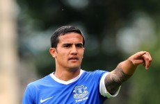 O'Neill keen on Cahill loan for Sunderland