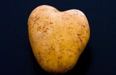 13 reasons why the potato should DEFINITELY be Ireland's National Vegetable