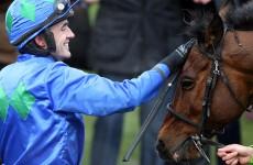 Ireland win Cheltenham: how 14 Irish horses made history in the Cotswolds