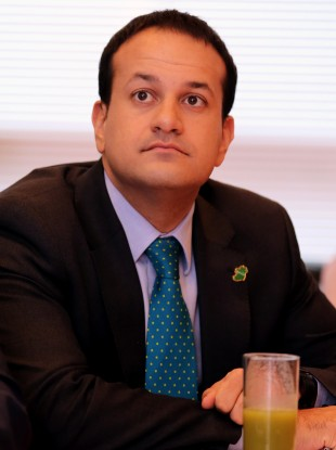 Fine Gael Minister for Transport, Tourism and Sport Leo Varadkar (file photo)