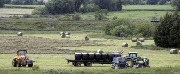 Irish farmers journal dating website 9