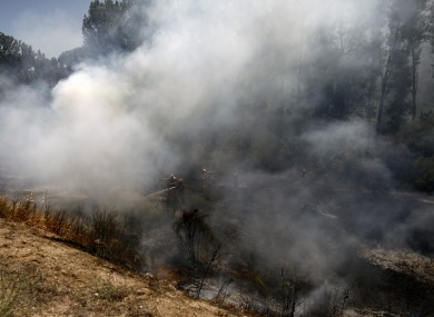 Forest fire in Spain this August.