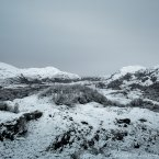 Frozen landscape in the dead of winter.<span class=