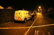 Man involved in garda stand-off dies in hospital