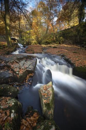 p159 Autumn at Cloghleagh Bridge