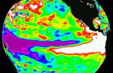 There's a 60 – 88% chance weather phenomenon 'El Niño' will strike this year