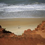A surfer carries his board along Cacimbinha beach in Tibau do Sul, near Natal, Brazil.<span class=