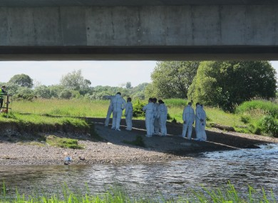 The Garda Forensic Team comb the banks of the River Shannon yesterday