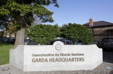 Gardaí seized €32 million worth of drugs in 12 months