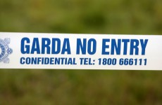 Two dead after van and motorbike collide on N80 in Laois