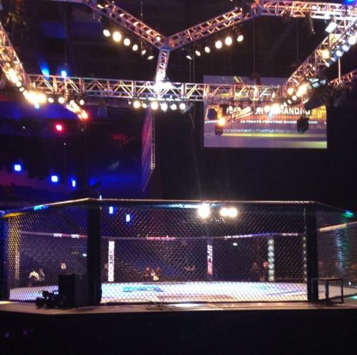 UFC cage