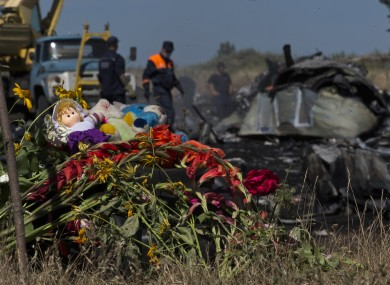 Toys and flowers are placed at the crash site of Malaysia Airlines Flight 17 near the village of Hrabove, eastern Ukraine.