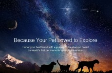 You can now pay to send your dead pet's remains into space