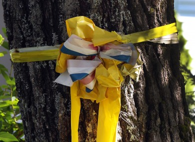 A yellow ribbon is tied to a tree outside the family home of freelance journalist James Foley.