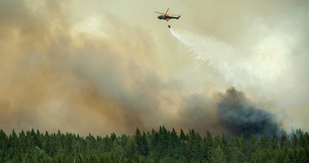 'Worst forest fire in living memory&#
