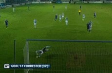 'I didn't think it went in' – Watch Chris Forrester's spectacular 30-yard strike