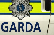 A man has died after being hit by a garda patrol car in Louth
