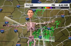 TV weatherman does his report as a skeleton, wins Halloween