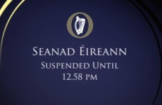 Seanad suspended twice in less than a hour after row over 'inebriated' senators