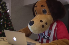 How Twitter, Bovril and Sammy Saint helped a Southampton fan secure a date