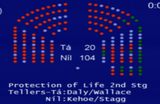Can fatal foetal abnormalities be legislated for? Politicians want to take ANOTHER look…
