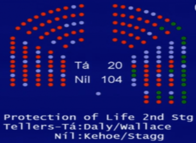 The Dáil voted down Clare Daly's bill by 104 votes to 20 earlier this month.