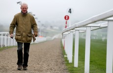 Five Willie Mullins flyers to follow at Cheltenham 2015