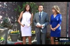 Behold. The most awkward news segment you'll see today