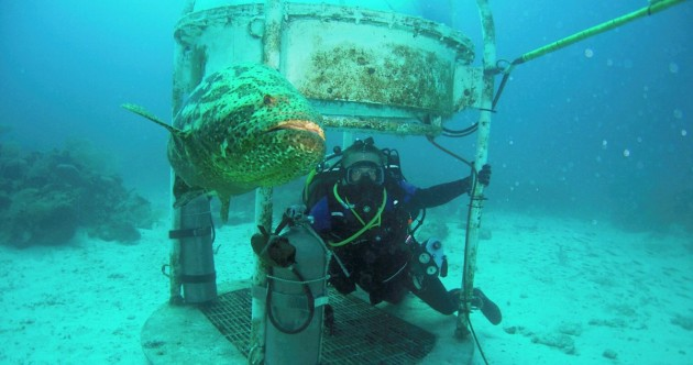 Scientists have built a lab 62 feet under the sea – but they aren't using it to explore the ocean