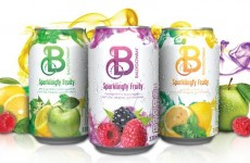 Ballygowan is now selling fizzy flavoured water in cans – here's our verdict