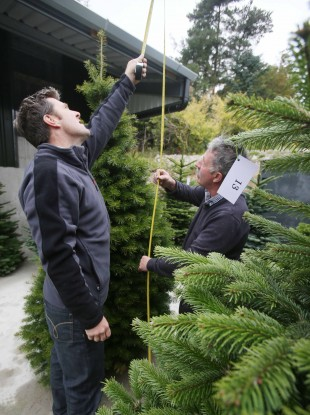 Dermot (left) examines a tree