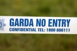 Two men arrested over dissident activity in Dublin