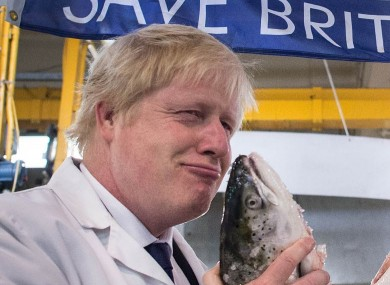 Prominent Leave campaigner and potential next UK prime minister Boris Johnson.