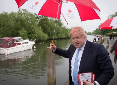 Prominent figure in the Vote Leave campaign Boris Johnson