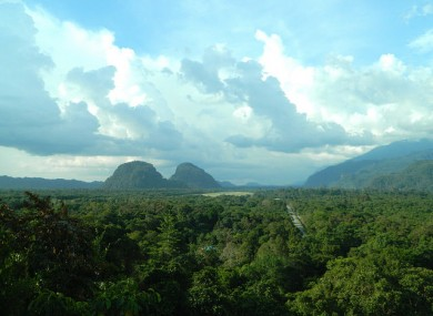 The view over Mulu National Park