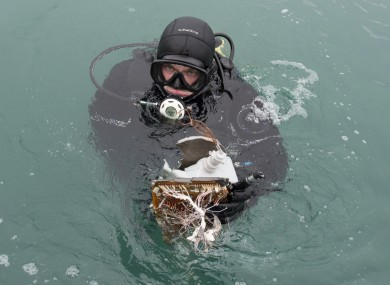 A Russian diver lifts a fragment of the plane from the Black Sea.