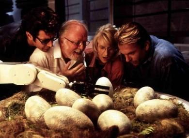 Dinosaur eggs in Steve Spielberg's Jurassic Park.