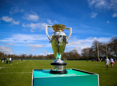 Ireland will hope to get their hands on this next month.