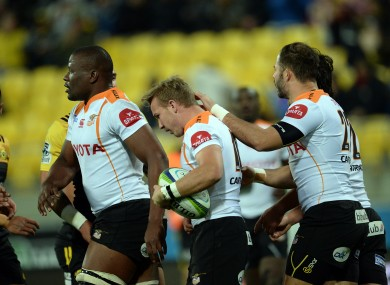 Cheetahs players celebrate a try in Wellington this year.
