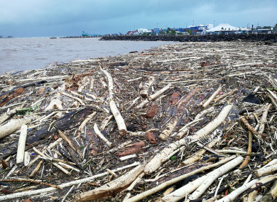 Photo shows wood floating on the water in Samoa after a cyclone blew through.