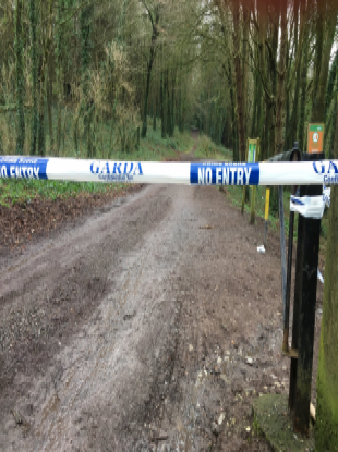 Gardaí launched the search almost two weeks ago.