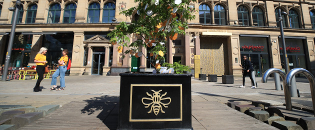 Messages left on a 'Tree of Hope' in Manchester, ahead of the Manchester Arena National Service of Commemoration at Manchester Cathedral to mark one year since the attack on Manchester Arena.
