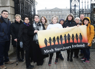 Members of the Mesh Survivors Ireland support group at Leinster House in January.