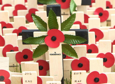 File Photo: Westminster Abbey Field of Remembrance in London, UK.